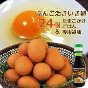 ぶんご活きいき卵 24個&たまごかけごはん専用醤油150mlセット 大分ファーム/農場HACCP認証農場【送料無料】【敬老の日ギフトクーポン】