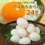 ぶんご活きいき卵アスのちから白玉 6個入り×4パック(24個セット) 大分ファーム/農場HACCP認証農場【送料無料】【敬老の日ギフトクーポン】