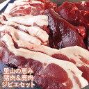 【先着クーポン20%OFF】国東半島ジビエ 猪肉300g 鹿肉300g 猪肉肩ロース300g 山香アグリ【送料無料】