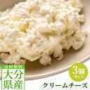 5%還元 【送料無料】クックヒルファーム クリームチーズ 140g×3個セット