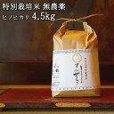 5%還元 大分県竹田市産 ヒノヒカリ 特別栽培米【無農薬】「てん米もり」4.5kg たなべ農園【送料無料】【味覚の秋フェアクーポン】