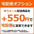 TAKUHAI-MAIL 配送を宅配便に変更オプション 宅配便オプション 宅配オプション 宅配便 宅配 オプション※「ゆうメール配送」商品が対象です