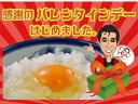さくらたまご80個(60個+破損保証20個含む))卵のサイズはMS〜Lサイズとなります  【本州・四国 送料無料】【RCP】【グルメ大賞2013】★【smtb-...