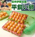 平飼い卵30個 【本州・四国 送料無料】【RCP】★