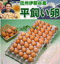 平飼い卵50個 【本州・四国 送料無料】【RCP】★【smtb-t】