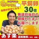 平飼い卵30個