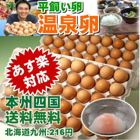 平飼い卵の温泉卵80個入