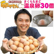 さくらたまごの温泉卵30個入