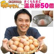さくらたまごの温泉卵50個入