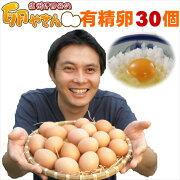 ■10個パック対応■ 有精卵30個