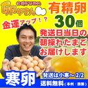 ★寒卵★■10個パック対応■ 有精卵30個