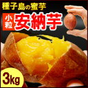 サツマイモ さつま芋