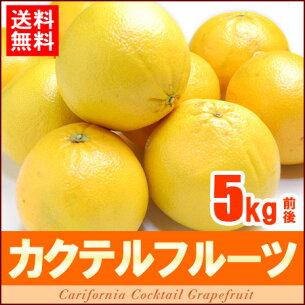 カクテル フルーツ アメリカ グレープフルーツ オレンジ