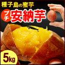 プチ安納芋(5kg)種子島産 サツマイモ さつま芋 蜜芋 送...