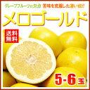 完熟メロゴールド 中玉(5-6玉/約3.5kg)アメリカ産 グレープフルーツ メローゴールド 送料無料