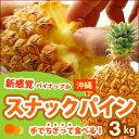 スナックパイン(3kg前後)沖縄産 高糖度パイナップル 送料無料