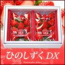 ひのしずくDX(約300g×2P)熊本産 贈答用 いちご 苺 イチゴ 送料無料