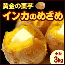 プチインカのめざめ(3kg)北海道産 じゃがいも ジャガイモ じゃが芋 送料無料