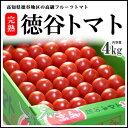 徳谷トマト(4kg)高知産 塩トマト フ