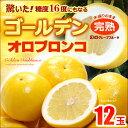 ゴールデンオロブロンコ中玉(12玉)カリフォルニア産 グレープフルーツ 高糖度 送料無料