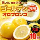 ゴールデンオロブロンコ大玉(10玉)カリフォルニア産 グレープフルーツ 高糖度 送料無料