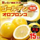 ゴールデンオロブロンコ大玉(15玉)カリフォルニア産 グレープフルーツ 高糖度 送料無料