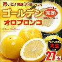 ゴールデンオロブロンコ大玉(27玉)カリフォルニア産 グレープフルーツ 高糖度 送料無料