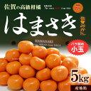 はまさきみかん(小玉/約5kg)佐賀産 糖度12.5度以上 送料無料