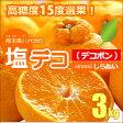 塩デコ(約3kg)熊本県八代産 デコポン でこぽん 不知火 みかん 柑橘 送料無料【05P07Feb16】