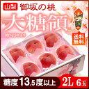 御坂の桃 大糖領白桃(2L×6玉)山梨産 糖度13