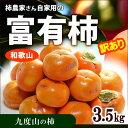 訳あり富有柿(約3.5kg)和歌山九度山産 ふゆう柿 ふゆうがき ご家庭用 ワケアリ 送料無料