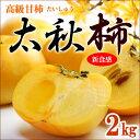 太秋柿(約2kg)熊本/愛媛産 たいしゅうがき 高級甘柿 送料無料
