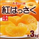 紅八朔(2-3L/3kg)広島産 はっさく ハッサク 瀬戸田 因島 柑橘 送料無料