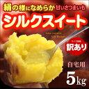 訳ありご家庭用シルクスイート 無印ランク(5kg)茨城産 焼いも サツマイモ 送料無料