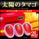 太陽のタマゴ(2L×3玉)宮崎産 宮崎マンゴー 糖度15度 送料無料
