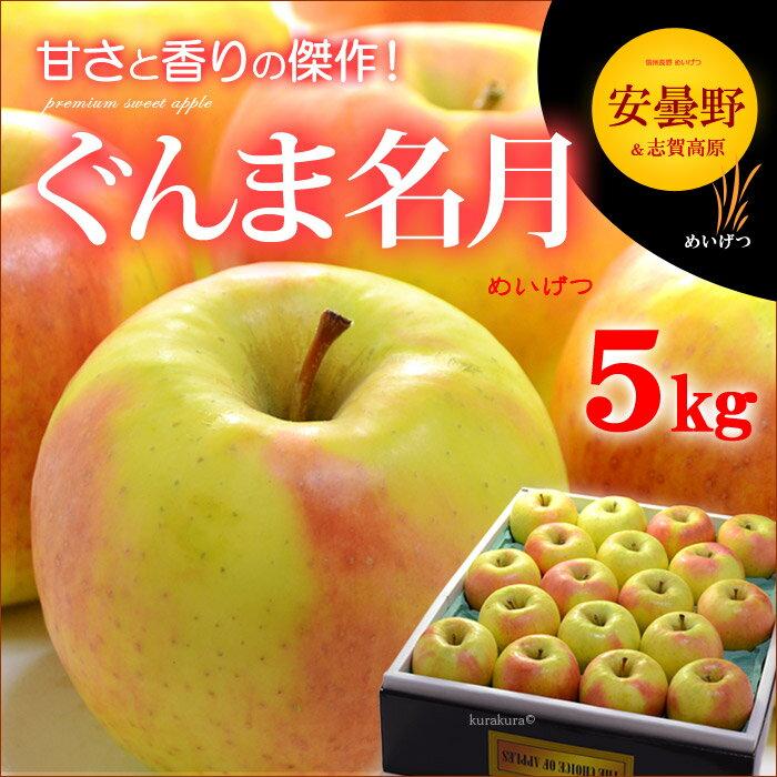 ぐんま名月りんご(5kg)長野県安曇野産 リンゴ 林檎 送料無料