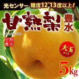 甘熟豊水梨3L-5L(5kg)産地はお任せ 糖度12度以上の大玉豊水梨をお届け 送料無料