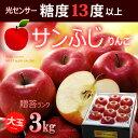 サンふじりんご 糖度13度以上選果(3kg)青森産/岩手産 贈答用 ギフト 大玉 りんご 林檎 サンフジ 送料無料