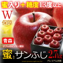 5プレミアム サンふじりんご(約2.7kg)青森産 蜜入り&糖度13度以上選果 特選 贈答用 ギフト 大玉 りんご 林檎 サンフジ 送料無料