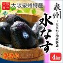露地栽培 泉州水なす C/無印 訳あり(約4kg)大阪産 大阪泉州の伝統野菜 水茄子 送料無料