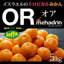 オアオレンジ(約5kg)イスラエル産 ORマンダリン オア高糖度 送料無料