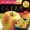 ぐんま名月りんご(約2.7kg)青森産 リンゴ 林檎 送料無料 お歳暮 ギフト