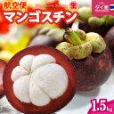 フレッシュ 生マンゴスチン(約1.5kg)タイ産 世界三大美果 甘酸っぱい魅惑のトロピカルフルーツ 食品 フルーツ 果物 マンゴスチン 送料無料