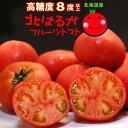 北はるか(約900g)北海道産 トマト とまと フルーツトマト 糖度8度以上 夏のフルーツトマト 送料無料