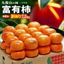 訳あり富有柿(約7.5kg)和歌山九度山...