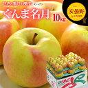 ぐんま名月りんご(10kg)長野産 リンゴ 林檎 食品 フルーツ 果物 りんご 送料無料