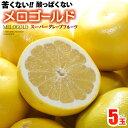 完熟メロゴールド 中玉(5-6玉/約3.5kg)アメリカ産 グレープフルーツ メローゴールド 食品 フルーツ 果物 グレープフルーツ 送料無料