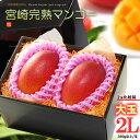宮崎マンゴー(2L×2玉/約700g)宮崎産 秀品 ギフト 贈答 国産 完熟 マンゴー 食品 フルーツ 果物 マンゴー 送料無料