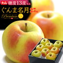 ぐんま名月りんご(約2.7kg)青森産 リンゴ 林檎 食品 フルーツ 果物 りんご 送料無料 お歳暮 ギフト