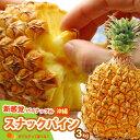 スナックパイン(3kg前後)沖縄産 パイン 食品 フルーツ 果物 パイナップル 送料無料